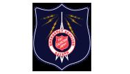 Satern Logo